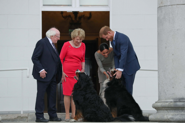 President & Sabina Higgins receive TRH The Duke & Duchess of Sussex on a Courtesy Call